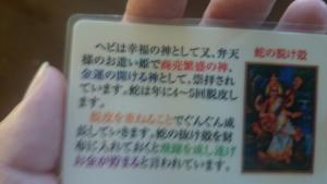 カードの裏側です